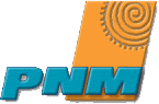 Public Service Company of New Mexico
